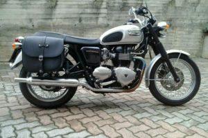 834c23a703 Bonneville Saddlebag - Franco Cuoio - Borse per Harley, Triumph...