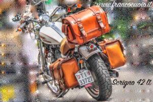 26 TOUR-PAK  BAG 42 LT per Harley
