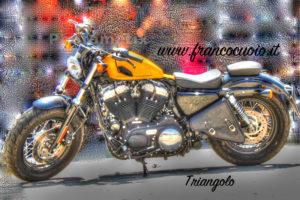 "10 Tasca ""Triangolo SX"" per Harley Sportster"