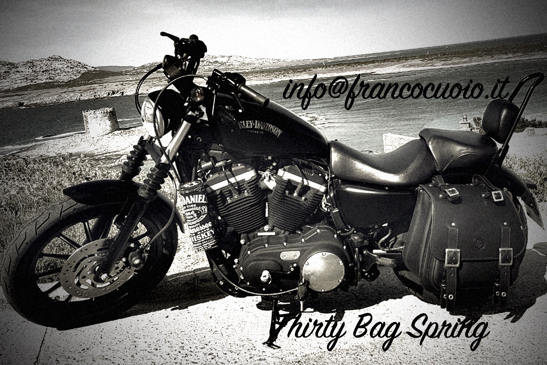 "08 Sacca ""ThirtyFive"" Per Harley Sportster"