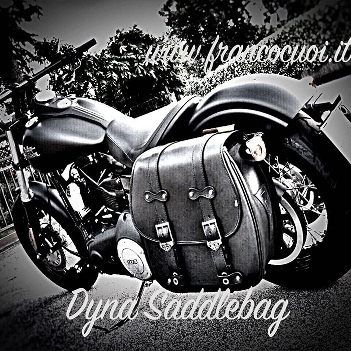 dyna saddlebag