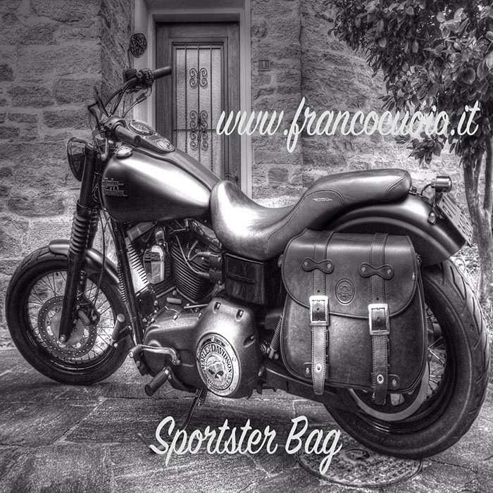 sportster saddlebag