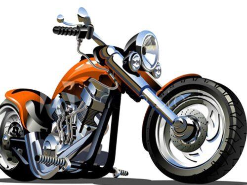 Bisacce per Moto